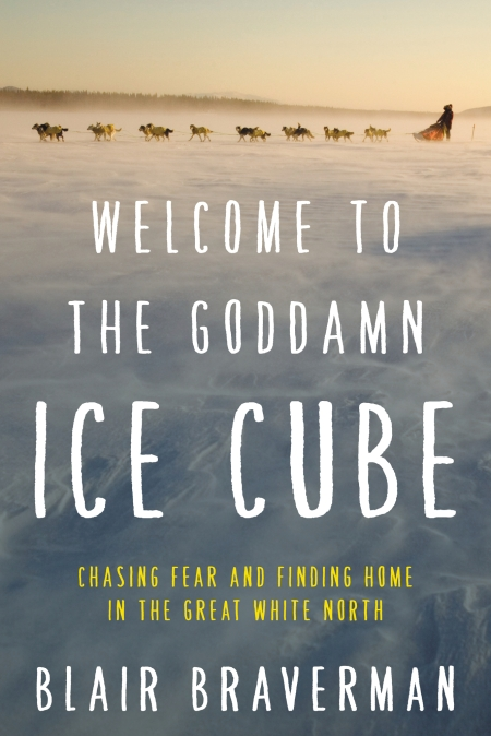 Welcome-to-the-goddamn-ice-cube-blair-braverman-review